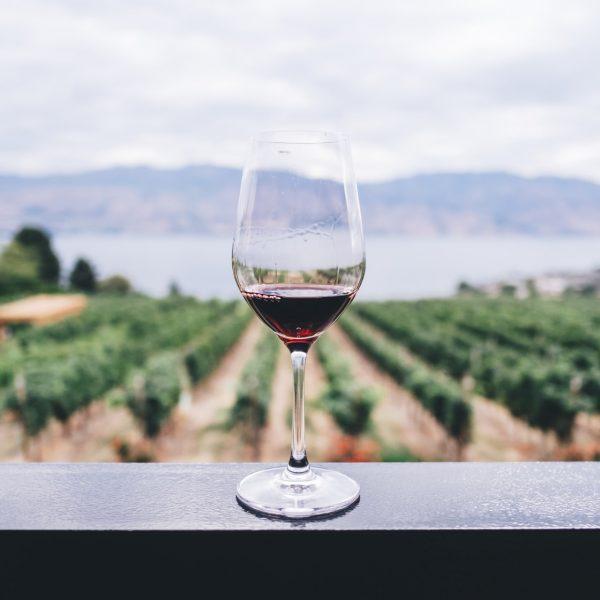 Top 5 des meilleures régions vinicoles en Europe
